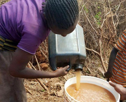 woman pours dirty water into bucket