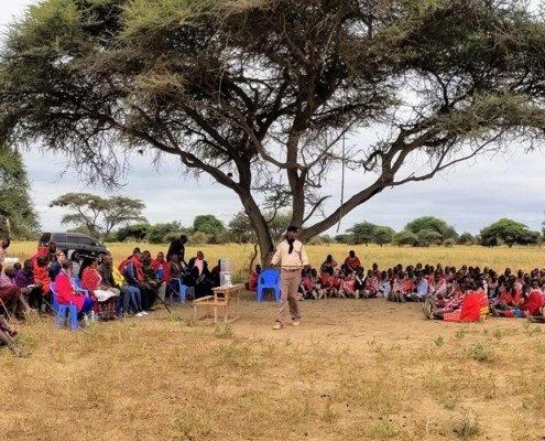 Maasai Filter Distribution under an acacia tree