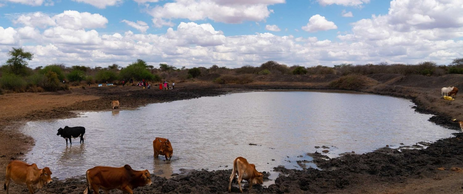 Shallow water pan in Kenya